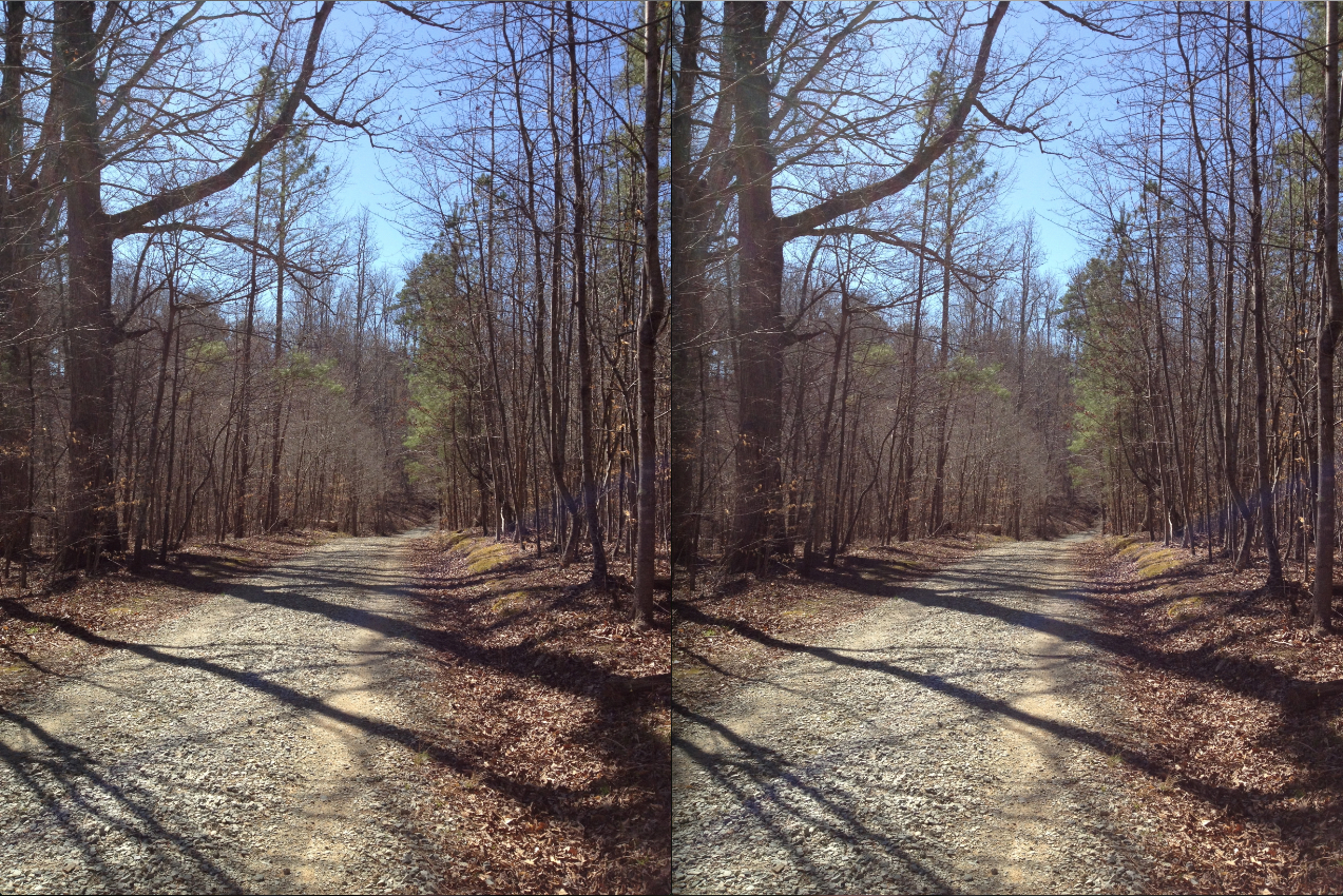 two images of roads side by side in Duke forest